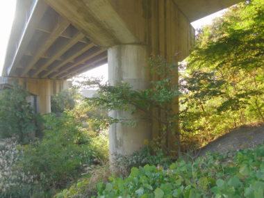 不動岩橋橋脚耐震補強設計 施工前