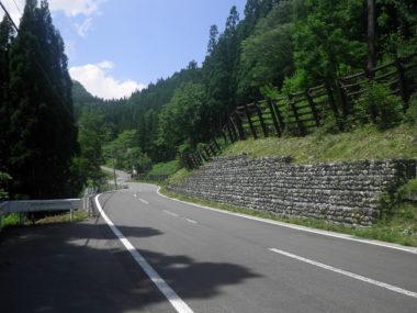 (一)奉納中土(停)線道路詳細設計 施工後