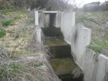 浅川ダム土捨場設計 施工後1
